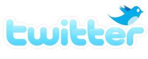 Augmenter sa visibilité sur internet referencement twitter 300x121