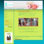1&1 votre site internet en toute médiocrité site11 22 150x150