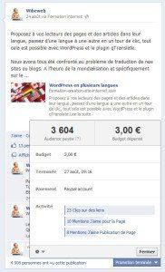 pub-facebook-audience