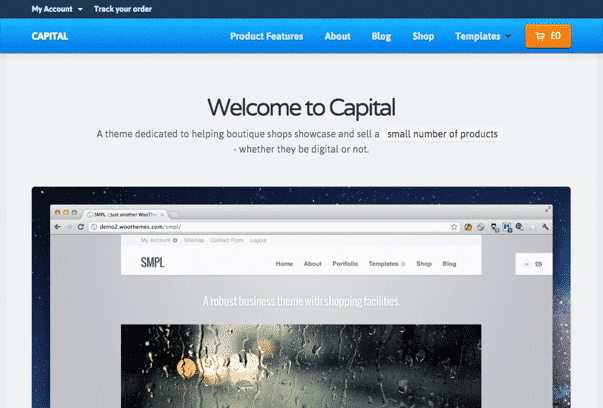 Capital-WordPress-Theme