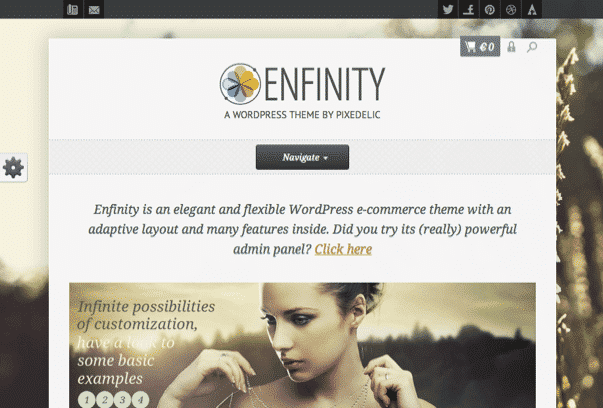 Enfinity-WordPress-Theme