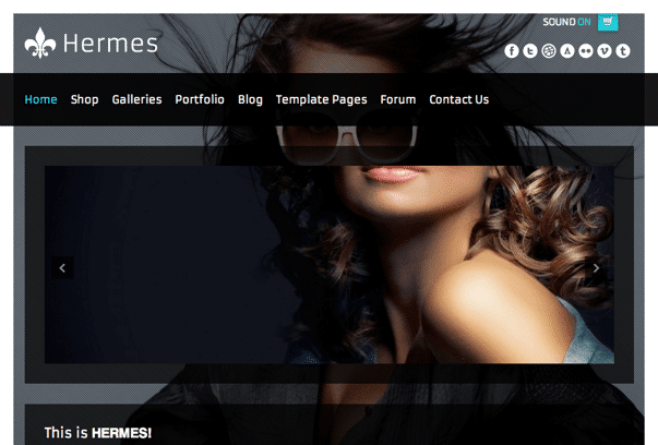 Hermes-WordPress-Theme