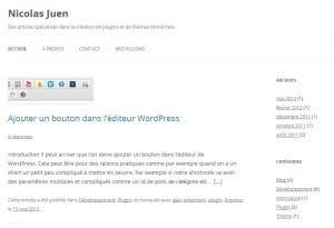 WordPress, les meilleurs sites Francophones nicolas juen 300x205