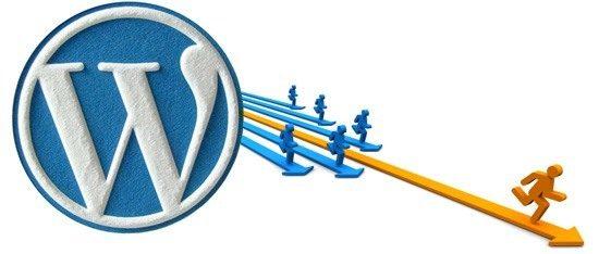 Consultant WordPress comment le choisir ?