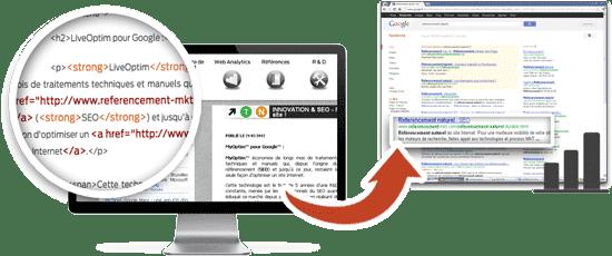 plugin SEO - LiveOptim