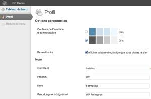 Interface utilisateur WordPress