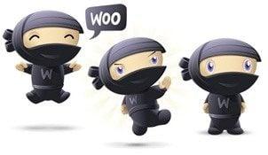 Woocommerce plugin gratuit