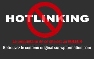hotlinking 300x190 Le Plagiaire et voleur de contenu imbécile