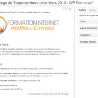 Newsletter WP Formation