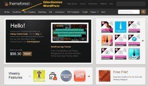 Thème WordPress Payant   Faire le bon choix! themeforest 1 300x176