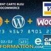 carte bleue wordpress1 100x100   Paiement Carte Bleue avec WooCommerce dans wordpress
