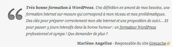 widget temoignages wordpress