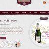 Créer un e Commerce avec WordPress Place des grands vins 100x100