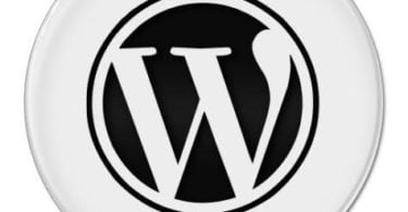BLOG-WordPress-options-ecran-2