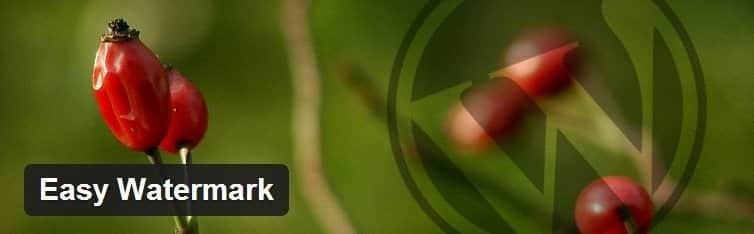 Évitez la copie et les plagieurs sous WordPress easy watermark