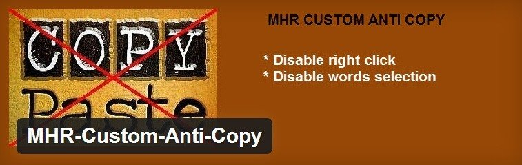Évitez la copie et les plagieurs sous WordPress mhr custom anti copy