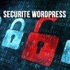 securite wordpress 100x100   11 rappels de Sécurité pour WordPress dans wordpress