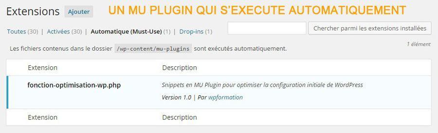 MU-Plugin-par-wpformation
