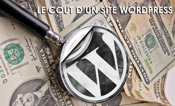 combien-coute-site-wordpress-pro
