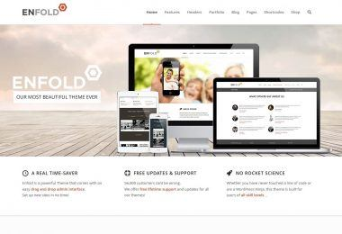 theme wordpress responsive enfold