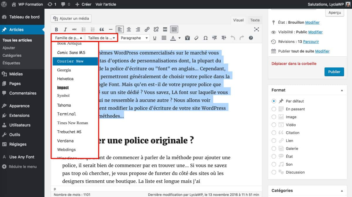 Polices basiques Use Any Font