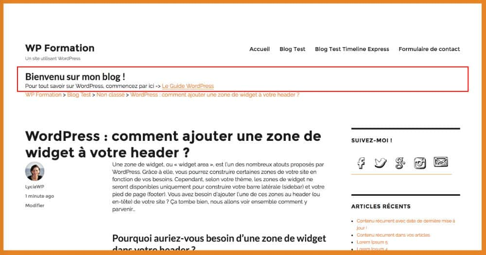 Apparence du Header avant modification CSS