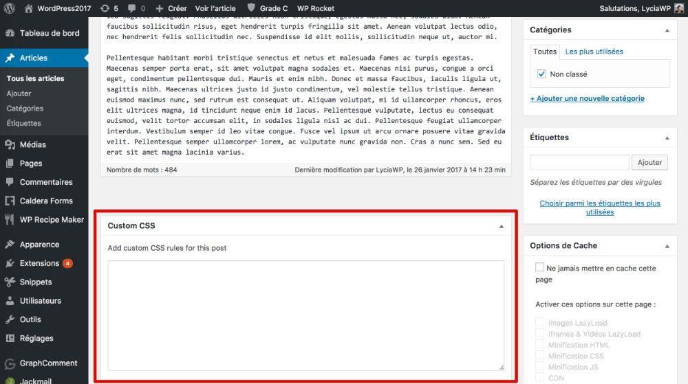 Custom CSS page par page