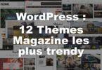 Thèmes magazine WordPress