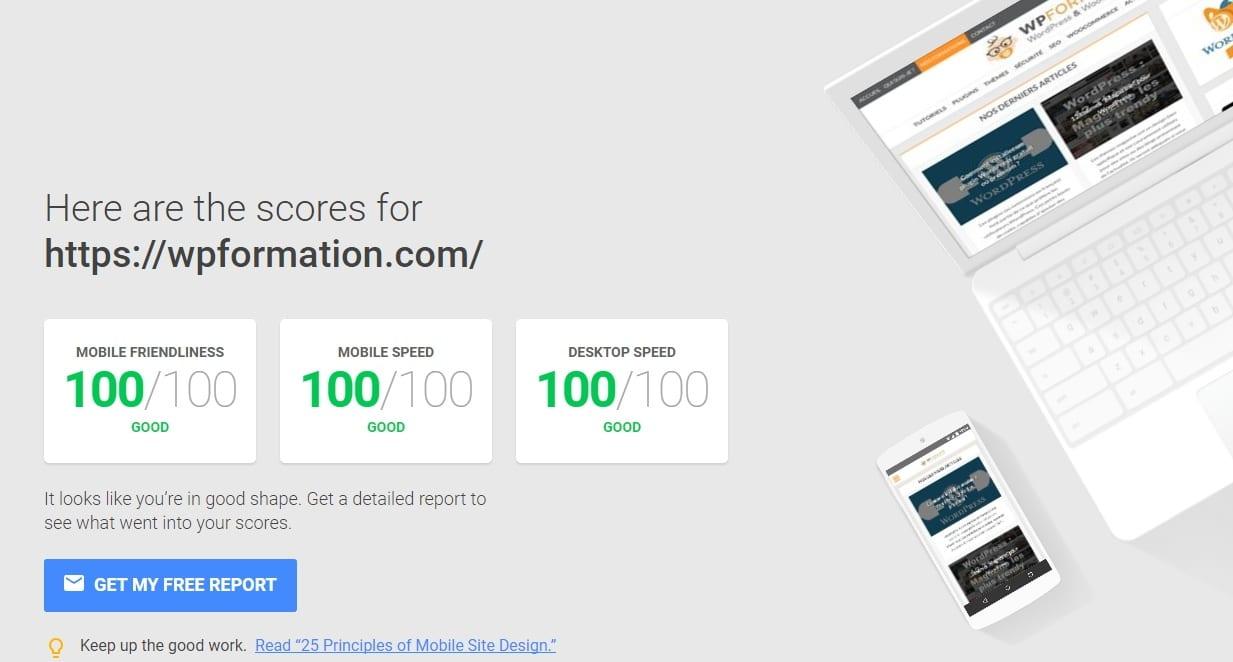 100 google pagespeed WordPress