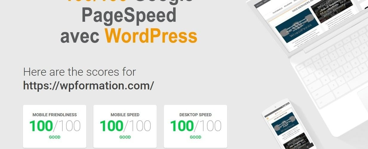 100-google-pagespeed-WordPress