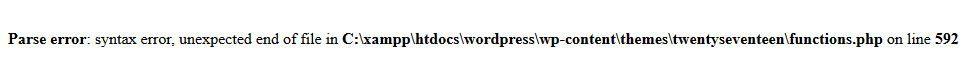 Bloqué sur WordPress suite à un message d'erreur « PHP Parse Error »