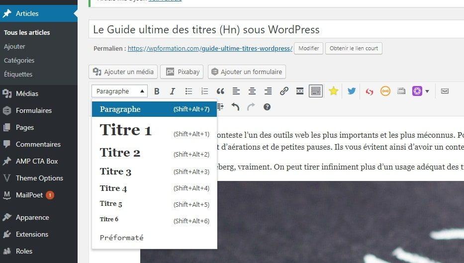 titres wordpress