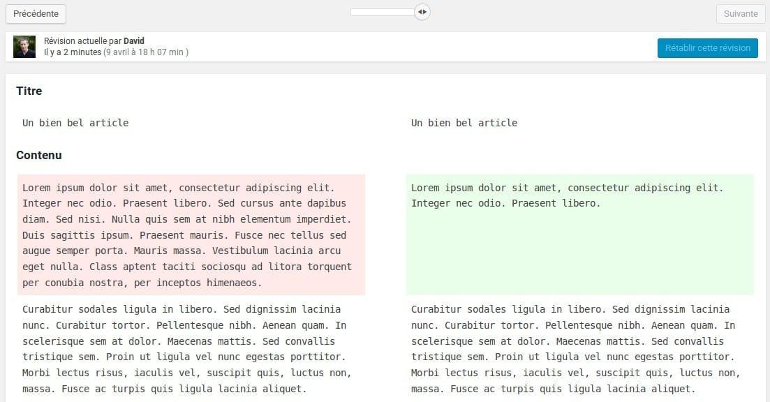 Comment utiliser outil revision wordpress - 3