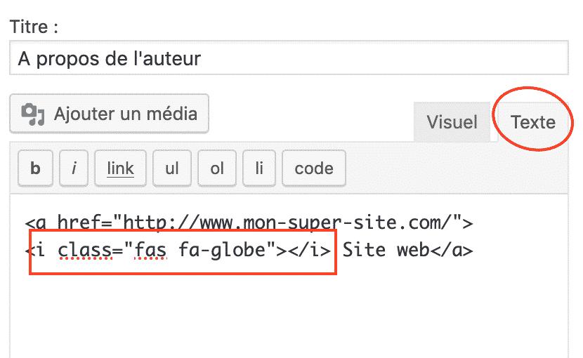 widget_texte