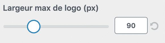 wp_neve_logo_size