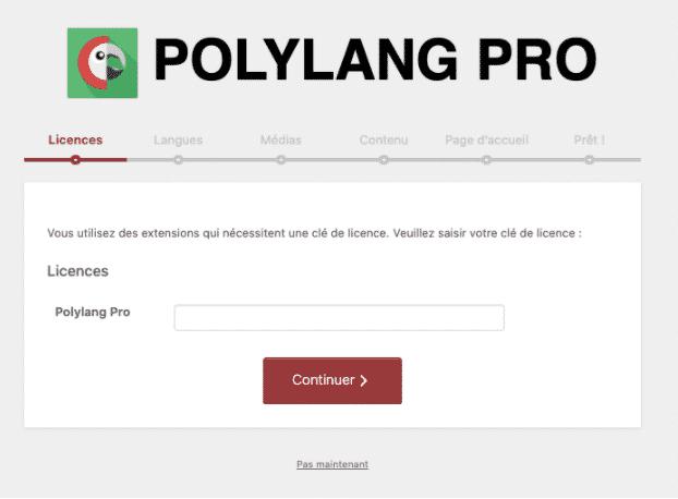 Polylang Pro Wizard