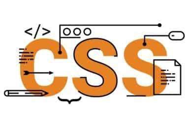 Css Wordpress