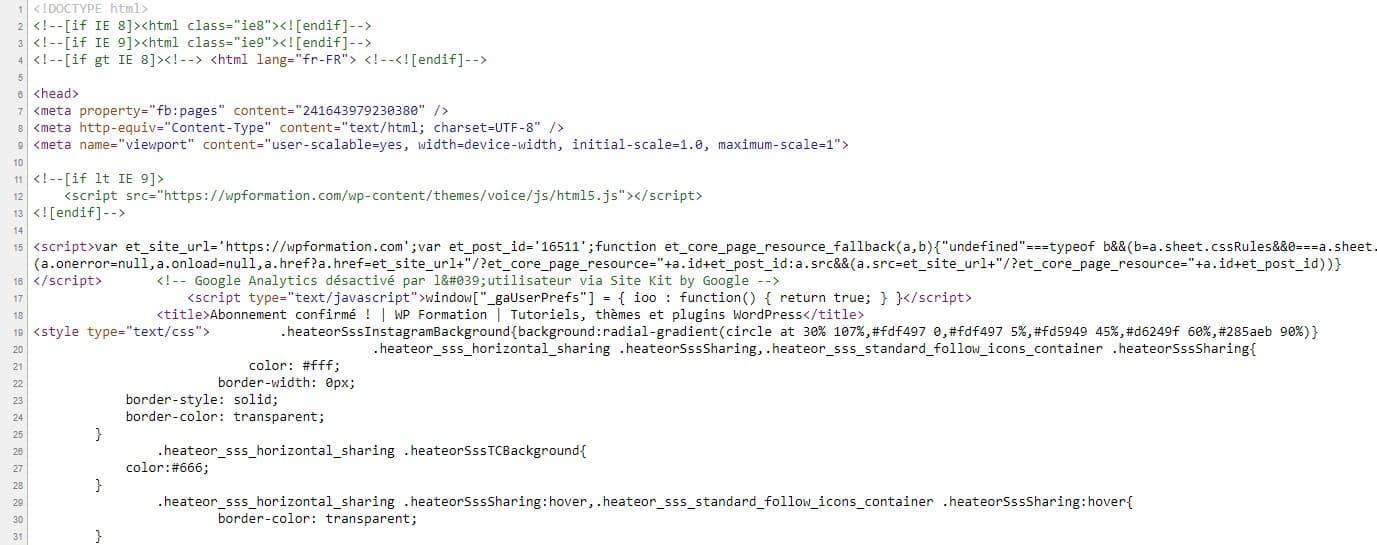 Ajouter Du Code Js Dans WordPress