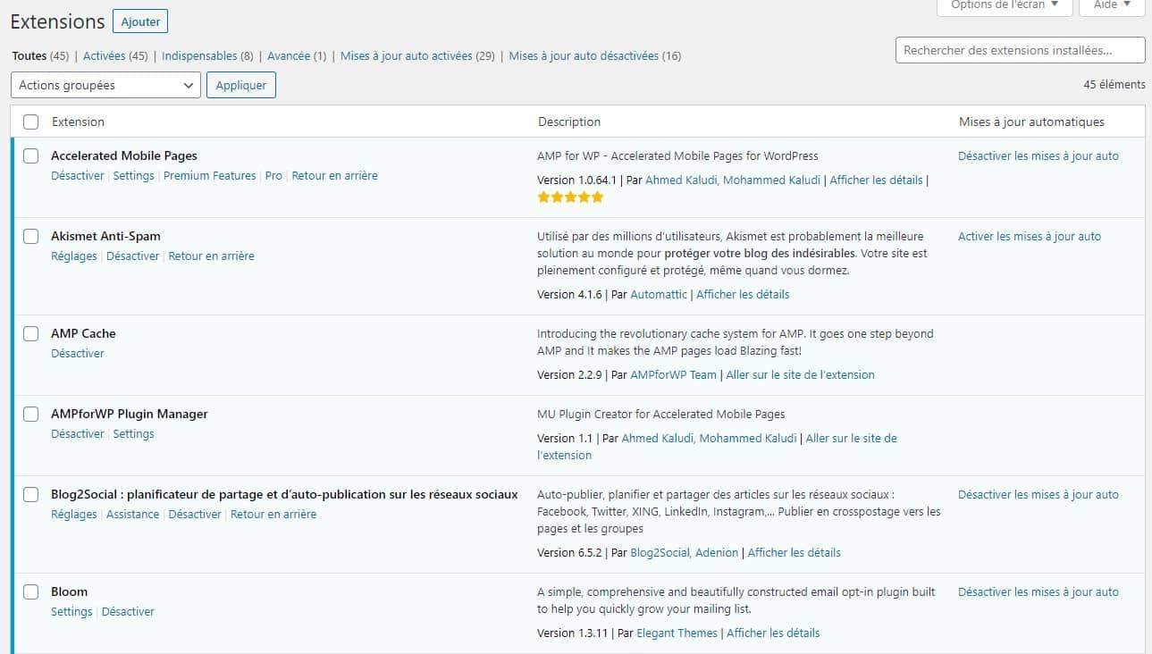 Mise A Jour Automatiques Plugins WordPress