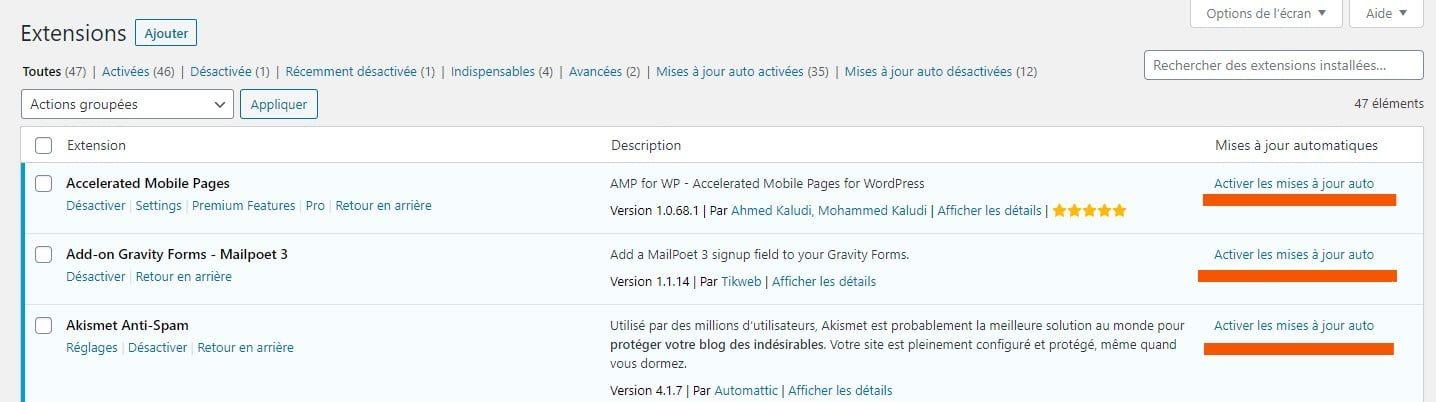 Activer Les Mises A Jour Automatiques Plugins WordPress 5