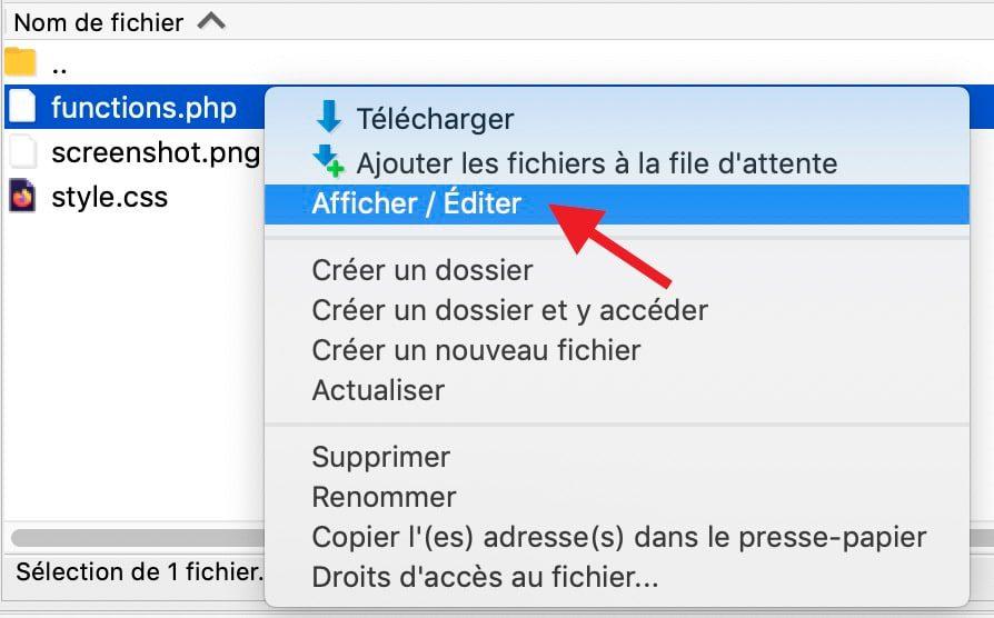 Plugin Dupliquer Article WordPress 6