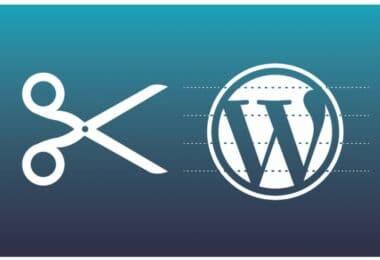 snippets wordpress