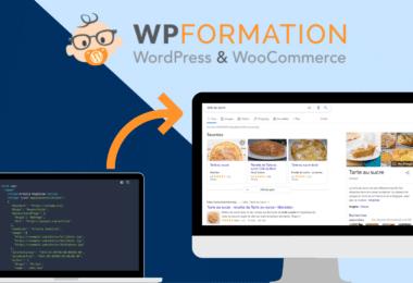 donnees structurees resultats enrichis wordpress